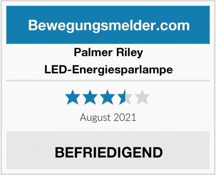 Palmer Riley LED-Energiesparlampe Test