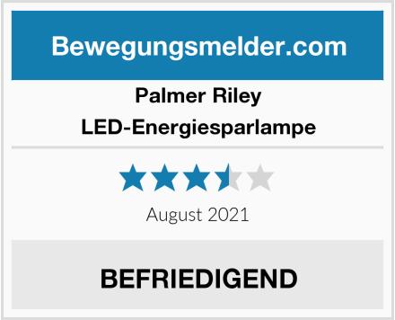Palmer Riley LED-Energiesparlampe Test