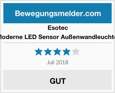 Esotec Moderne LED Sensor Außenwandleuchte  Test