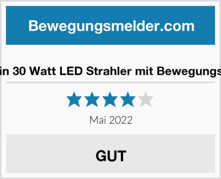 MustWin 30 Watt LED Strahler mit Bewegungsmelder Test