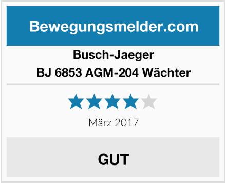 Busch-Jaeger BJ 6853 AGM-204 Wächter Test