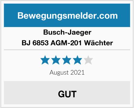 Busch-Jaeger BJ 6853 AGM-201 Wächter Test